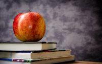 Medical Education Opp for Doctors