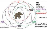 The Chronic Constellation