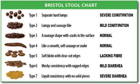 Bristol Poop Chart