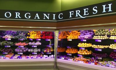 Organic Fresh Food