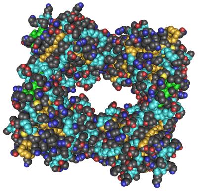 Human Tryptase Molecule