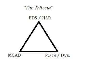 image of a triangle with EDS/HSD on top, POTS / Dys on one corner, and MCAD on the other labeled The Trifecta